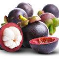 5 fruits exotiques pour se régaler