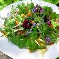 La meilleure salade à composer pour débuter le printemps
