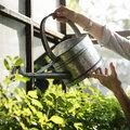 Comment aider vos plantes à survivre aux vacances?