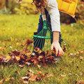 Que faire pour le gazon en automne?