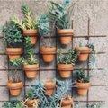 Le jardinage vertical est très tendance