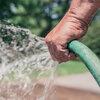 Que faire au jardin en cas de sécheresse?