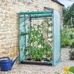 Serre à tomates double face pour 6 plants