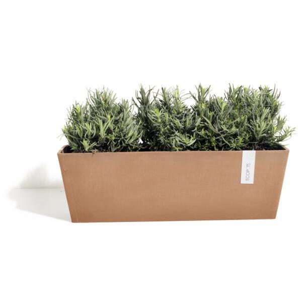 Acheter un bac fleurs bruges ecopots online pots for Acheter des plantes sur internet