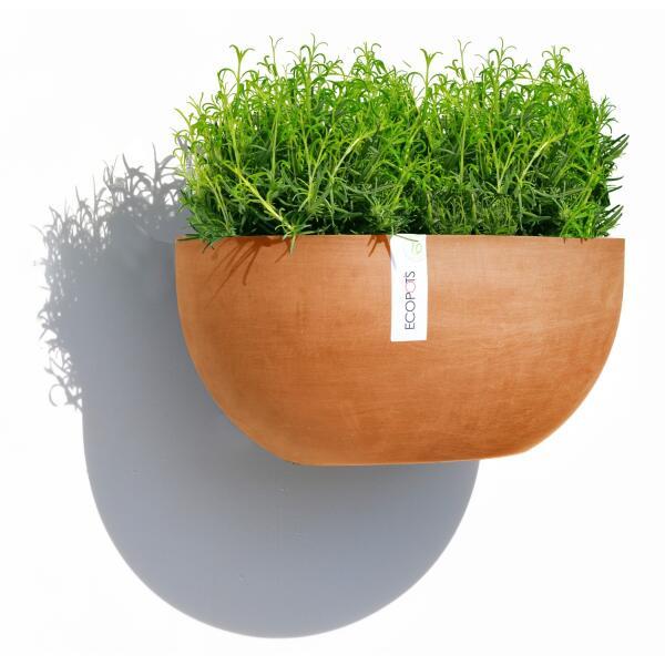 Acheter sofia un mod le mural de la gamme ecopots pots for Plantes acheter ligne