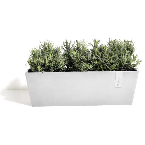 Acheter un bac fleurs ecopots bruges online pots for Acheter plantes en ligne