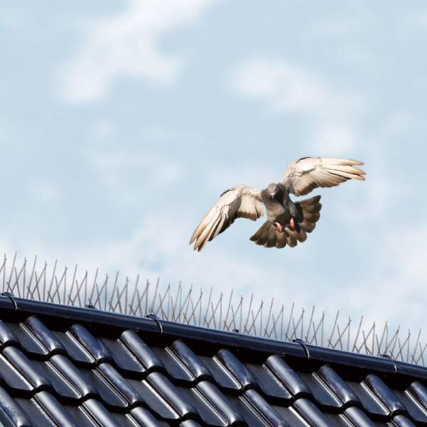 aiguilles anti oiseaux pour chasser les mouettes et pigeons oiseaux eloigner les animaux. Black Bedroom Furniture Sets. Home Design Ideas