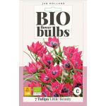 Bio Tulpe 'Little Beauty' - bio flowerbulbs (7 stück)