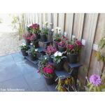 Blumentreppe Holz - anthrazit
