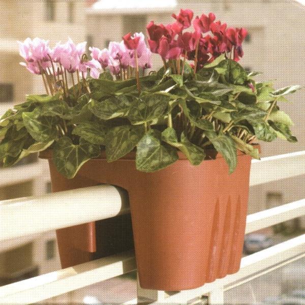 Wunderbar Blumenkasten Geländer Terrakotta