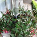 Bewässerungssystem mit Flaschen