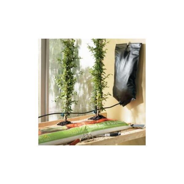 tropfset im gew chshaus mit einem tropfset ber. Black Bedroom Furniture Sets. Home Design Ideas