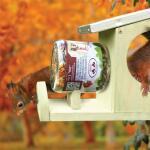 Eichhörnchenfutter in Topf