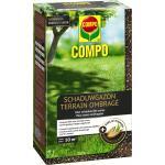 Rasensamen Schattenrasen 1 kg - 50 m²