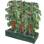 Pflanzbeutel für Gemüse - 84 x 33 x 15 cm