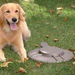 Hundehaufenverwerter aus Metall