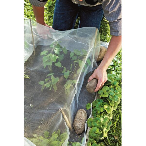 Produit Pour Traiter Le Bois Contre Les Insectes : filet anti insectes pour prot ger les l gumes insectes ~ Premium-room.com Idées de Décoration