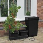 Anzuchtsystem mit automatischer Bewässerung