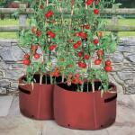 Pflanzbeutel Tomaten 40 Liter (2 stück)