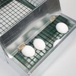 Legenest - Legekasten galvanisiert für 1 Huhn