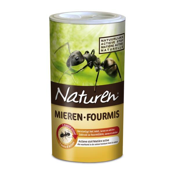 eliminer les fourmili res dans le gazon insectes. Black Bedroom Furniture Sets. Home Design Ideas