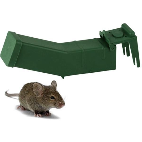 Acheter un pi ge souris respectueux de l 39 animal lutte for Tout pour la maison en ligne