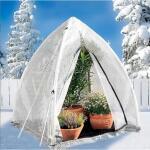 Wintergewächshaus 200 × 150 cm
