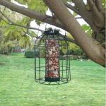 Silo à cacahuètes pour petits oiseaux