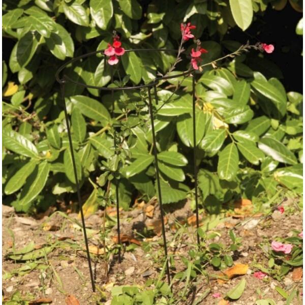 Tuteur pour plantes rond tuteur multifonctions set de 4 for Plantes acheter ligne