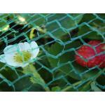 Gartennetz engmaschig - leicht 2 m x 5 Meter