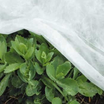 toile de protection pour les plantes protection contre le gel divers protection contre le. Black Bedroom Furniture Sets. Home Design Ideas