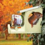 Futterhaus für Eichhörnchenfuttertopf