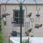 Komplette Futterstation für Gartenvögel
