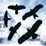 Vogelabwehr Aufkleber schwarz (5 stück)