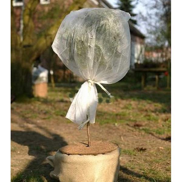voile d 39 hivernage pour rosiers housses transparentes pour plantes protection contre le gel. Black Bedroom Furniture Sets. Home Design Ideas