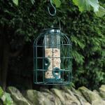 Saatfutterspender kleine Vögel